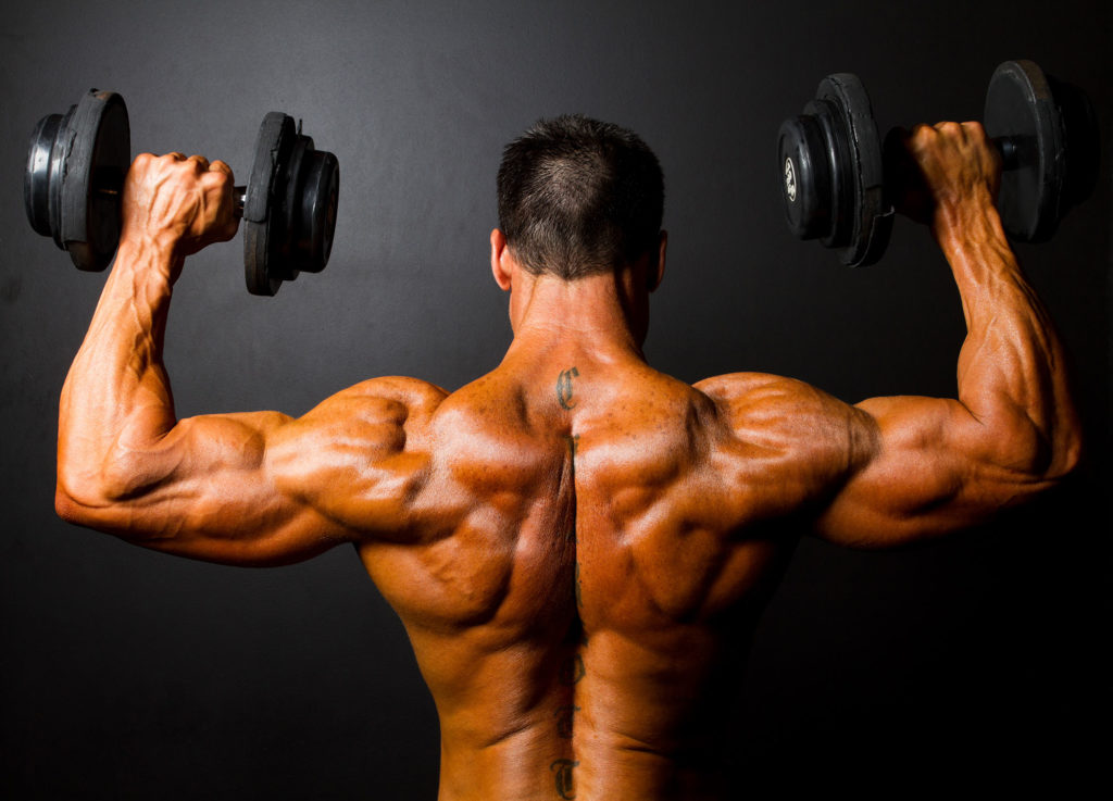 Muscle Hypertrophy Program The Best Way To Build